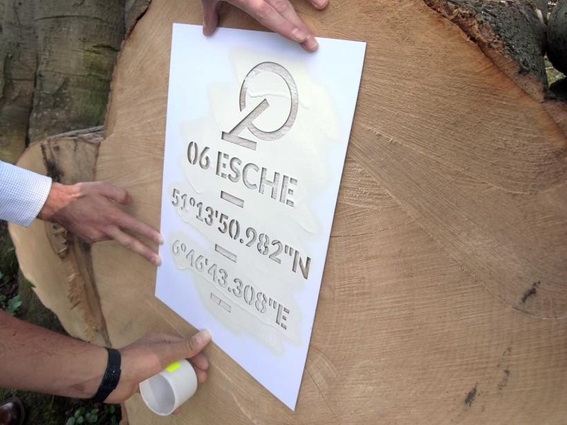 Düsseldorfer Sturmholz - Markieren des Baumes